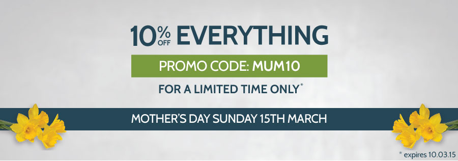 10% Off Everything